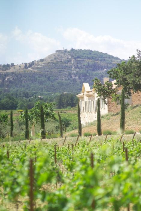 Château Paradis Bastide