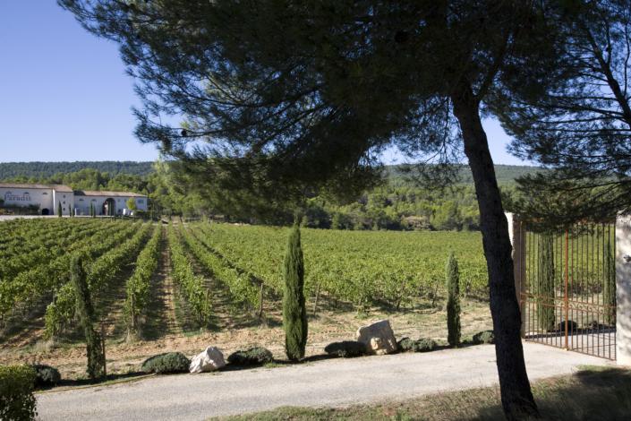 Domaine-Château-Paradis