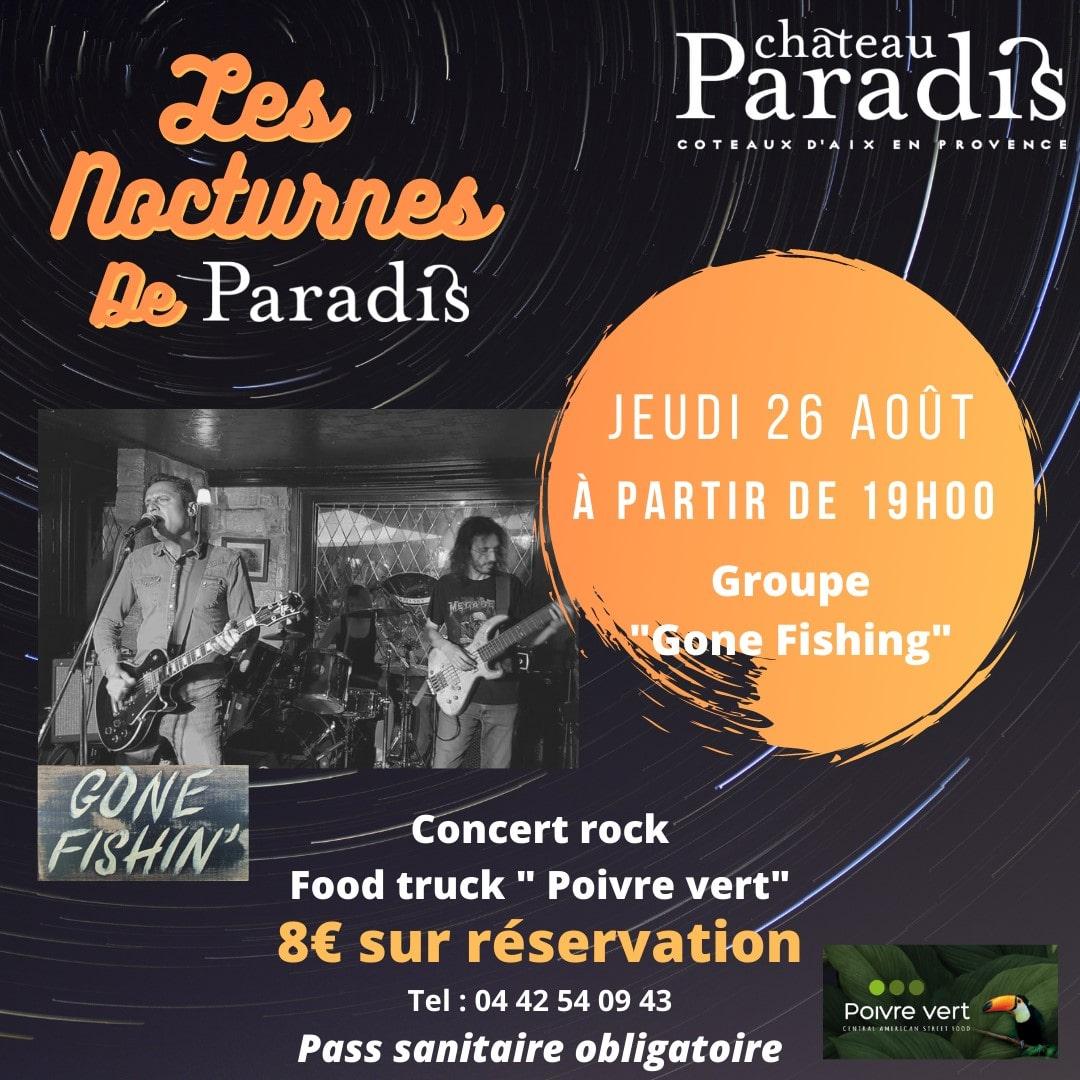 Photo concert rock château Paradis